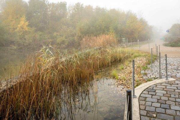 MK Landschaftsarchitektur Projekt Lobau 02
