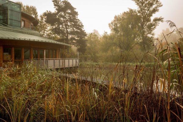 MK Landschaftsarchitektur Projekt Lobau 09