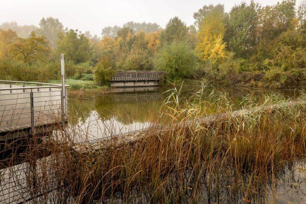 MK Landschaftsarchitektur Projekt Lobau 10