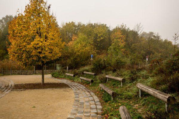 MK Landschaftsarchitektur Projekt Lobau 12