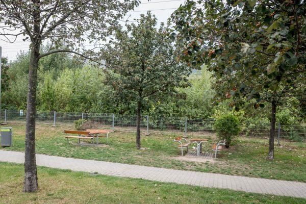 MK Landschaftsarchitektur Projekt Haugerstrasse 25