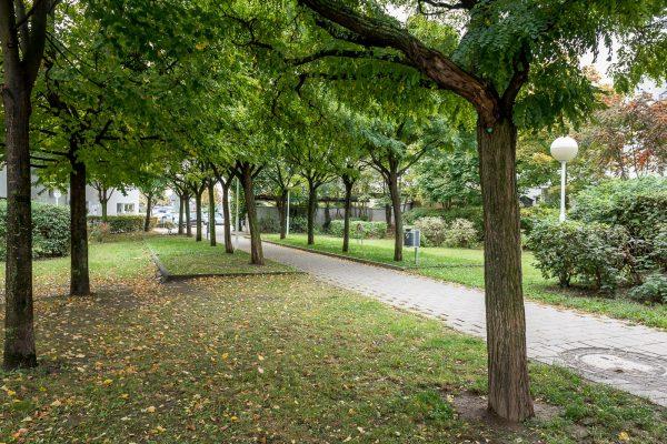 MK Landschaftsarchitektur Projekt Kapellenweg 16